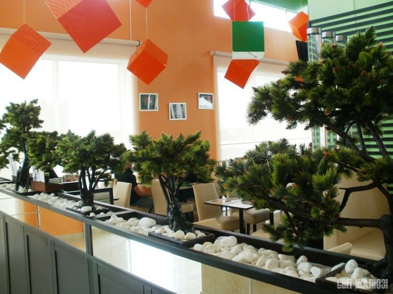 Суши-бар. Рулонные шторы открытого типа, прозрачный материал. Защита от солнца, декор интерьера.